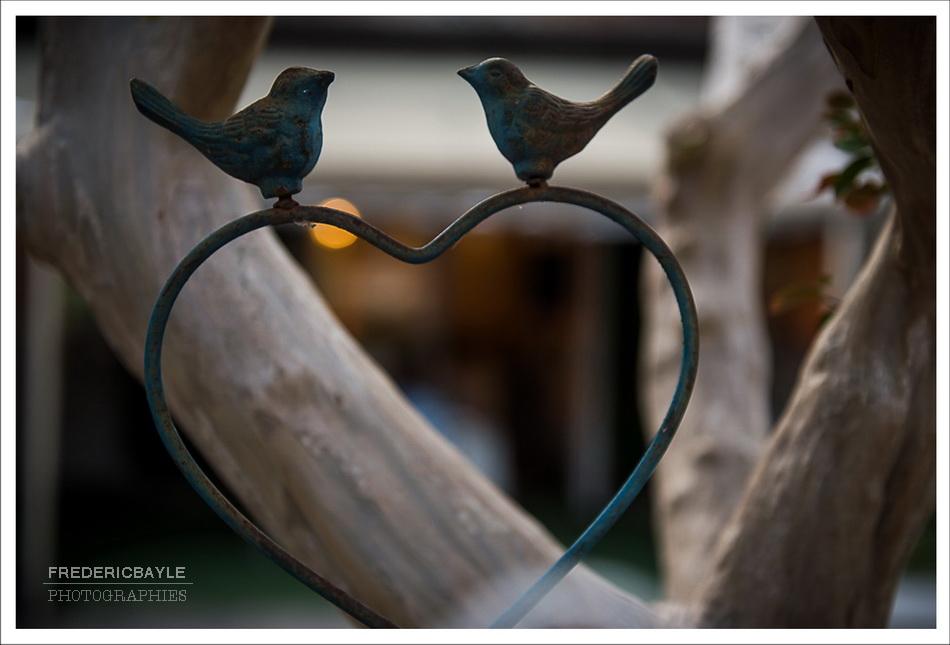 mariage-domaine-orangerie-15